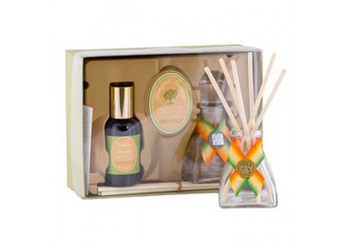 Grapefruit Fandango Mini Reed Diffuser Set
