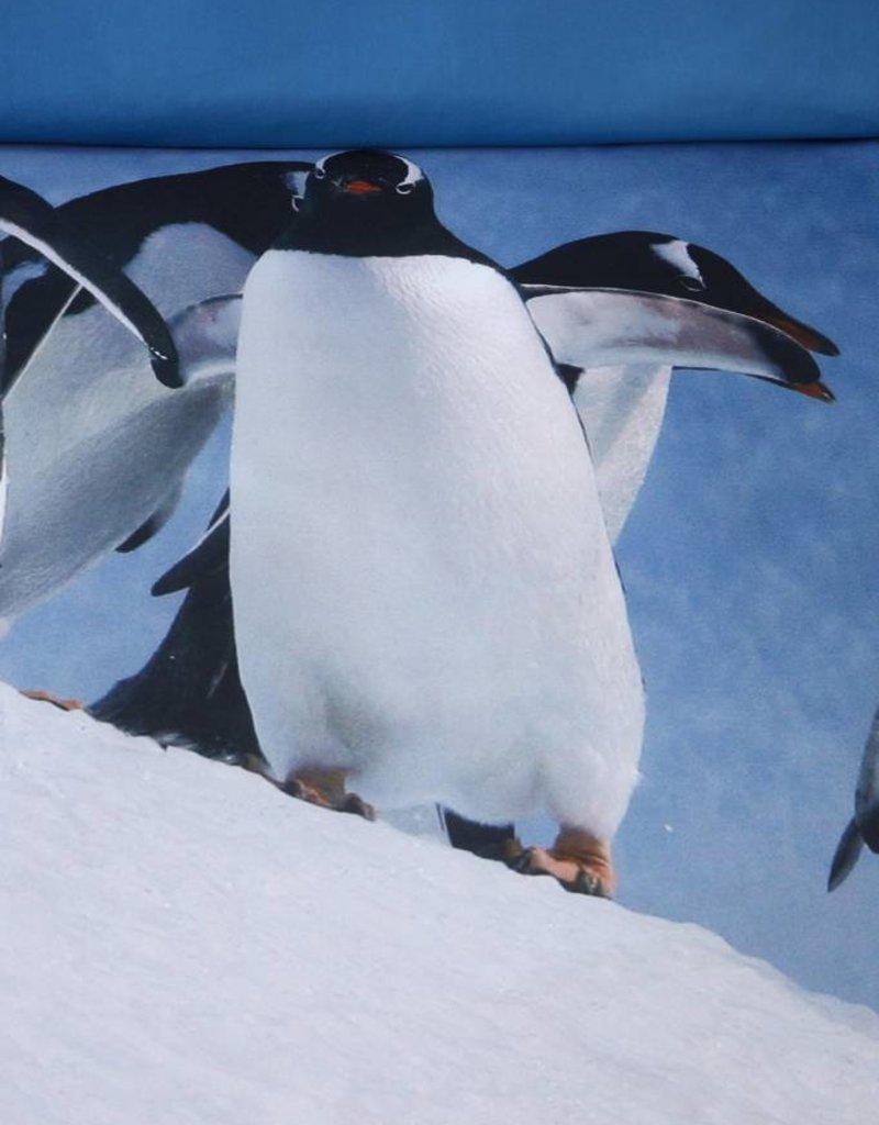 AMBIANTE Ambiante Penguins Ice Blue
