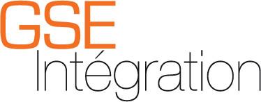 GSE GSE Dakfolie per m2