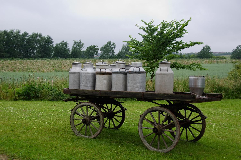 Melkbusshop, melkbus, melkbussen, melkbus kopen, melkbus te koop, melkwagen