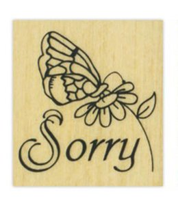 StudioZomooi Sorry