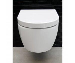 Frontplaat Hangend Toilet : Aqua royal sani sub rimfree wandcloset 54 cm met softclose bril