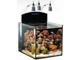 Aqua Medic Blenny Nano Reeftank