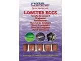 Ocean Nutrition Ocean Nutrition Lobster Eggs 100gr
