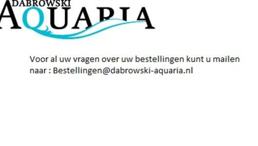 Voor al uw vragen ; bestellingen@dabrowski-aquaria.nl