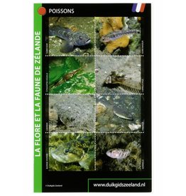 Determinatiekaart Zeeland (Franse editie)