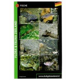 Determinatiekaart Zeeland (Duitse editie)