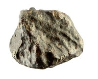 NWA meteoriet, Chondriet