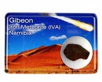 Gibeon ijzer meteoriet