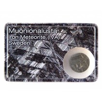 Muonionalusta meteorite in displaybox