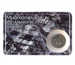 Muonionalusta meteorite in giftbox