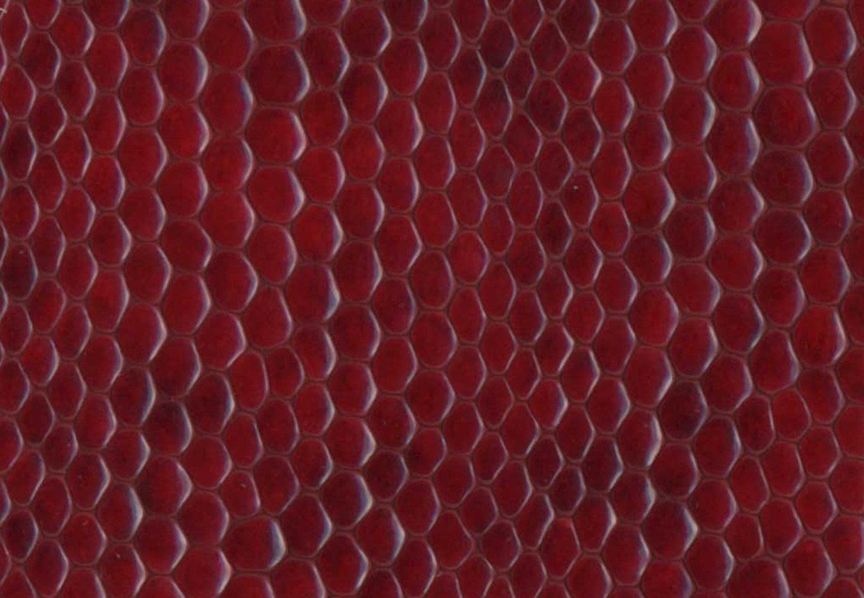 Lizard burgundy M34