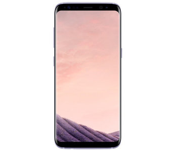 Samsung Galaxy S8 64GB Grau