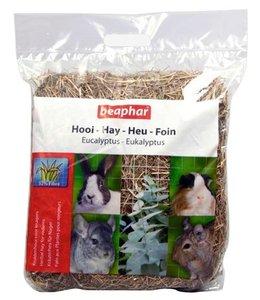 4x beaphar hooi eucalyptus