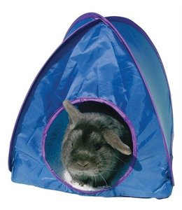 Pop-up tent assorti