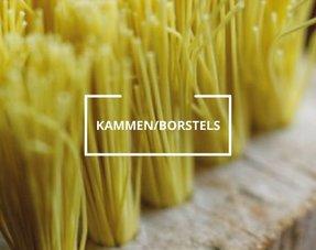 Kammen/borstels