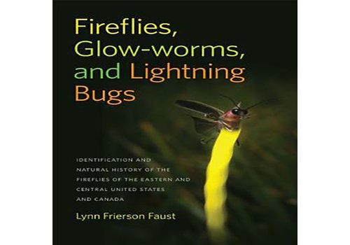 Fireflies, Glow-Worms, and Lightning Bugs