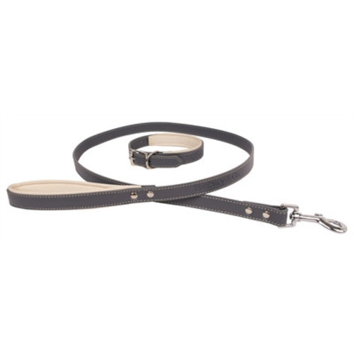Huismerk Banbury & co luxury dog halsband en hondenriem
