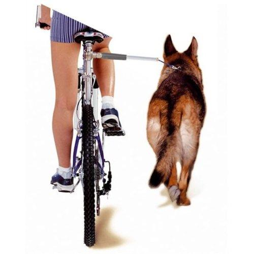 Huismerk Camon walky dog fietsbeugel