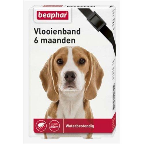 Huismerk Beaphar vlooienband hond zwart 6 mnd