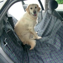 Auto hondendeken