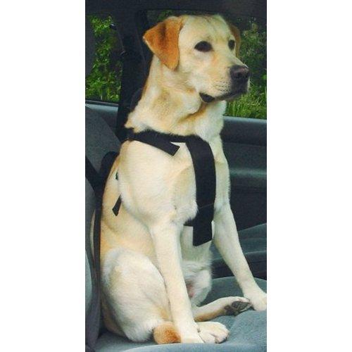 Huismerk Wandel- en autoharnas hond