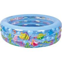 Familiezwembad rond aquarium 152