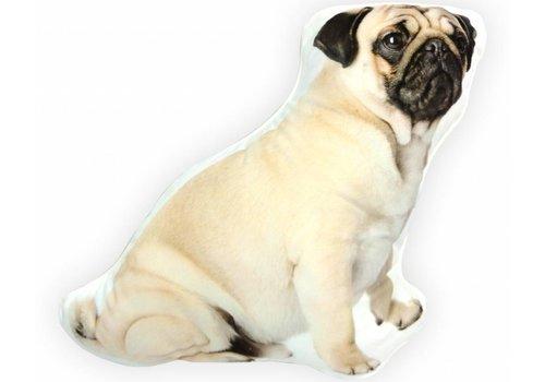 Pug Cream