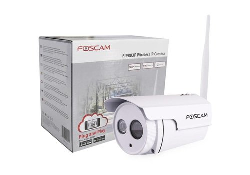 FI9803P HD Buiten Wi-Fi IP Camera