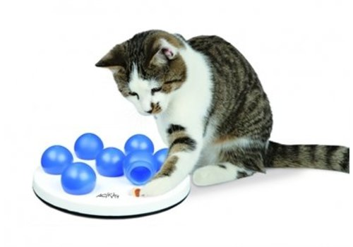 Trixie cat activity solitaire