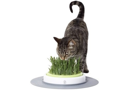 Hagen catit design senses grass garden kit