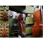 Leonardo Cello 3/4