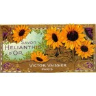 Cartexpo Affiche Helianthis d'Or 30x60