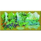 Cartexpo Affiche Violettes Persanes 30x60