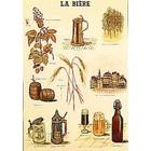Cartexpo Schoolkaart bier 50x70