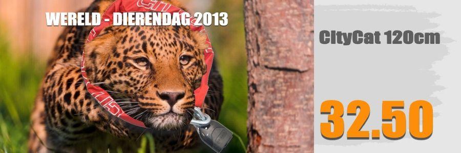 Wereld dierendag en Motorsloten