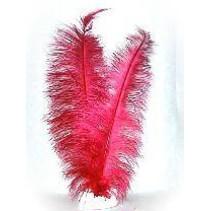 Veer spadonis rood