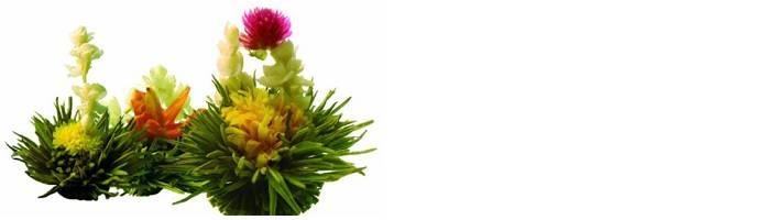 Zelf theebloemen maken