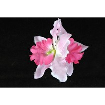 Haarbloemen Orchidee licht Roze