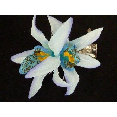 Hawaii haarbloem Lichtblauw