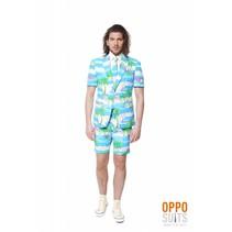Summer Flamingo suit