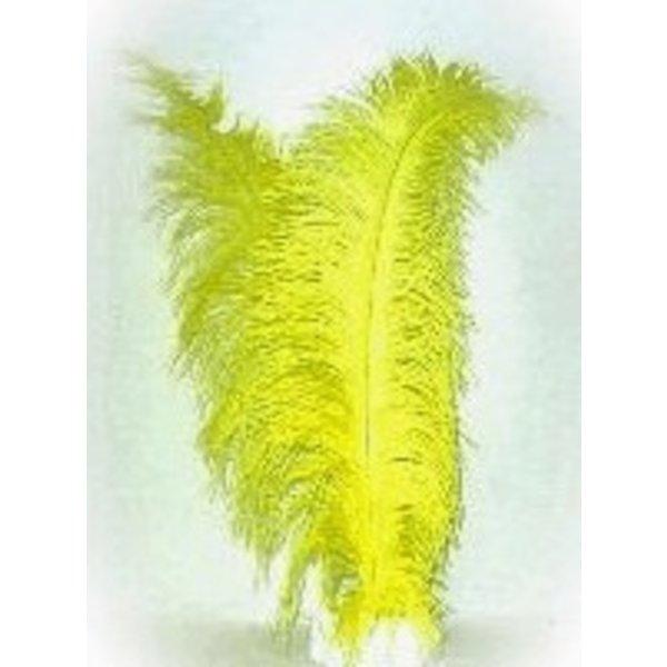 Spadonis geel