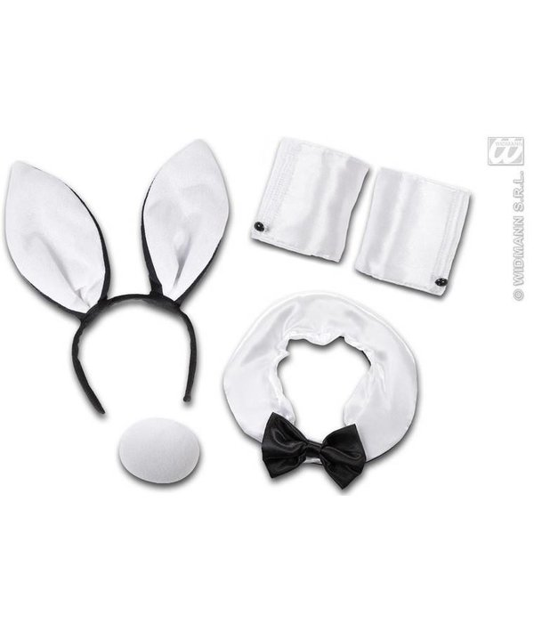 Sexy Bunny set