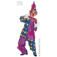 Clown met sterren