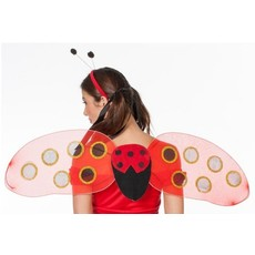 Vleugels en diadeem lieveheersbeestje