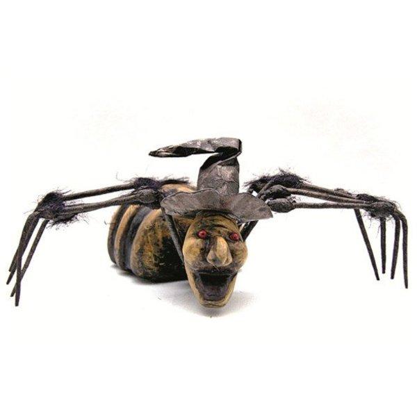 Spin groot met doodskop