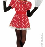 Minnie Mouse verkleedpak kind