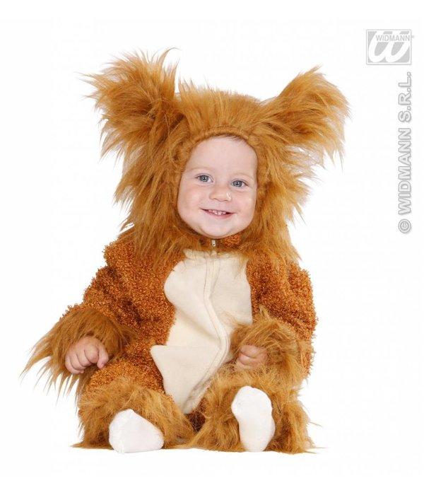 Leeuwtje pak mini