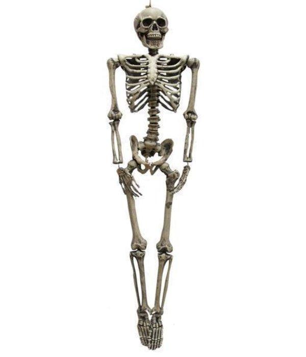 Skelet Horror decoratie