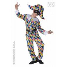 Harlekijn carnavalspak kind